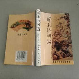 正版 唐宋诗词史
