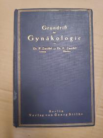 grundrib der gynäkologie von