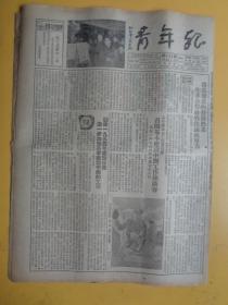青年报(1954.1.12)(今日一张半.六版)【决不允许美方强迫扣留战俘、文艺版:阿老插图毛主席和老人讲话等】【稀缺品】