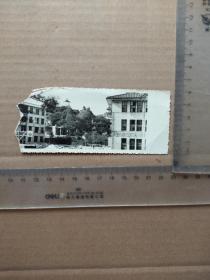 福州三中133周年校庆纪念(1846-1979)尺寸图为准
