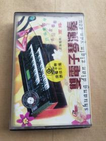 磁带:双电子琴演奏,20首超长版