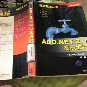 ADO.NET 2.0高级编程:微软技术丛书