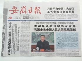 安徽日报2019年1月26日(4版全)