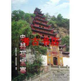 忠县石宝寨:长江三峡工程文物保护项目报告(精)