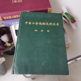 中国工会运动史料全书湖南卷