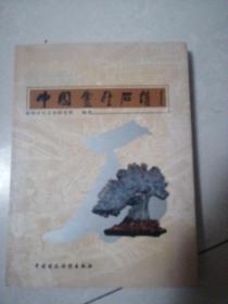 中国灵璧石谱