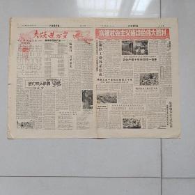 河南青年报