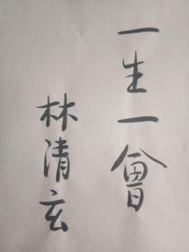 林清玄毛笔  题词一页 (图一)