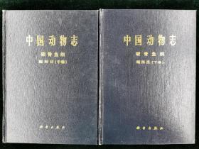 【稀见】中国动物志 硬骨鱼纲 鲤形目 中卷下卷合售