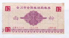 重庆市合川县96年合阳粮站购粮券 面粉票 合川县96年粮票