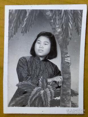 老照片:美女,照相馆道具棕榈树。【 三线——皖南基地——上海人那些事、那些人系列】