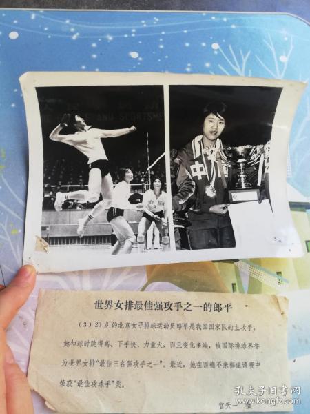 篮球运动员  郎平