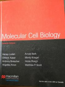 MolecuIarCellBioⅠogy