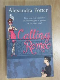 英文书    alexandra potter    共415页  32开