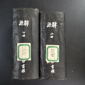 辞源(上下册)