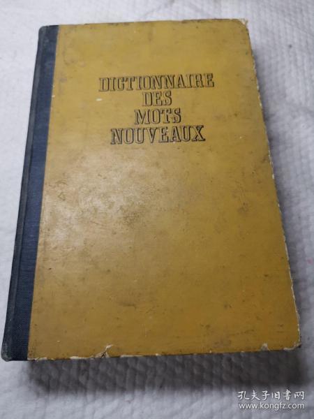 外文书,新词词典
