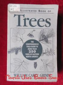 Illustrated Book of Trees: The Comprehensive Field Guide to More than 250 Trees of Eastern North America(英语原版 平装本)树木图册:北美东部250多种树木的综合野外指南