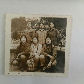 照片,文革女青年,在本溪人民公园