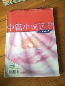 中篇小说选刊 文学双月刊 1999.1