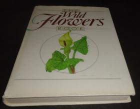 2手英文 The Wild Flowers Book 野花书 植物花卉绘画 sbb72