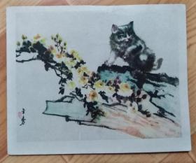 60年代画片:猫(林金秀绘,)