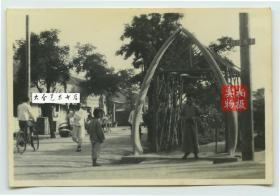民国1930年代山东威海卫新八景之首,三角花园鲸骨门老照片,如果此处进入再往里,就是管理公署1931年建成的收回威海卫纪念塔。三角花园周边也是当时威海最繁华之地