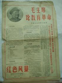 红色风暴(毛主席论教育革命)