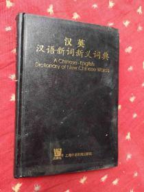 汉英汉语新词新义词典
