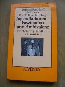 Jugendkuituren-Faszination und Ambivalenz青年文化魁力与矛盾【德文原版】32开【外文书--33】