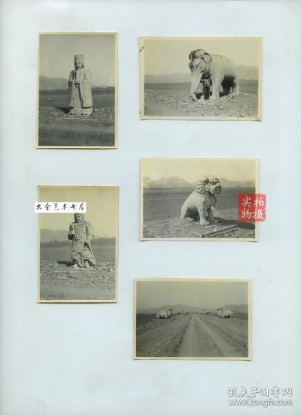 民国时期北京昌平十三陵神路上石雕雕像老照片一组五张,尺寸均为8.4X5.8厘米