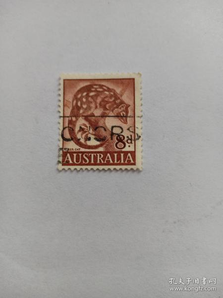澳大利亚邮票 8d 虎猫 1959年发行