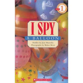 I Spy: A Balloon  视觉大发现系列:找找气球在哪里?
