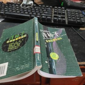 青柿子:网虫的青春故事