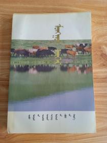 蒙古牛蒙文
