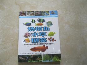 热带鱼水草图鉴