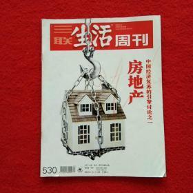 三联生活周刊 2009年第20期 总第530期 房地产--中国经济复苏的引擎讨论之一