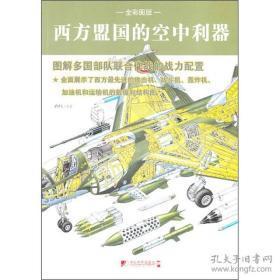 西方盟国的空中利器(全彩图版)