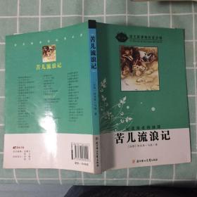 苦儿流浪记(导读版)/语文新课程标准必读