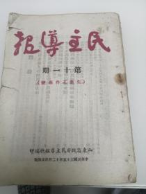 民主导报(第十一期)