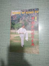 【插图本】中国武术词语手册