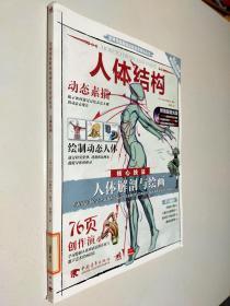 人体结构 动态素描 人体解部与绘画核心技法