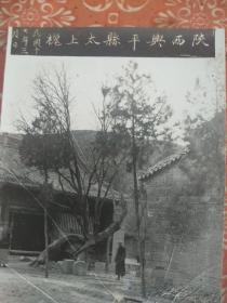 老照片,民国十七年三月,陕西兴平县太上槐
