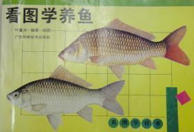 看图学养鱼