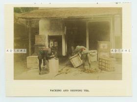 """清代日本茶道历史,茶厂打包生产好的狭山茶茶叶,13X8.8厘米。 狭山茶的历史悠久,它起源于镰仓时代,后因蒸制煎茶的制法在江户时代流传而逐渐被熟悉, 狭山茶有""""自有茶园自产自销""""的特点"""