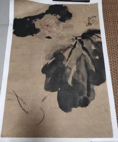 西安美院教授-张之光花卉 67*46