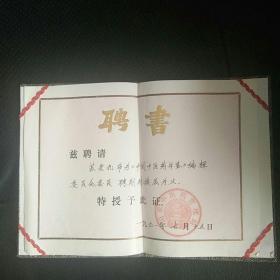 1991�藉�朵腑�昏��绠$��灞���涔�