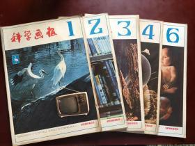 绉�瀛��绘�ワ�1982骞�1-5��锛�