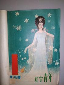 辽宁青年1981年1-24期合订本