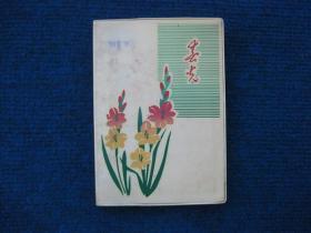 文革塑料日记本,春光,红色娘子军插页