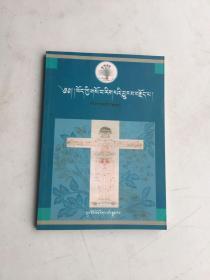 藏医史概论《 藏文版》